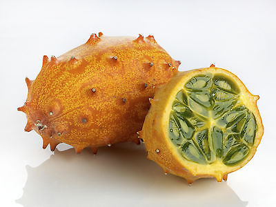 Melon Seeds - AFRICAN HORNED - Kiwano  - Very Unusual Fruit - 20 Seeds