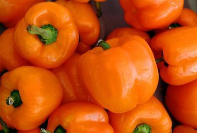 Sweet Bell Pepper - ORIOLE - Blocky 4 Lobed Fruit -Good Potted Plant -200+ Seeds